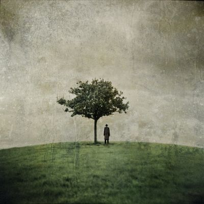 Ana_Kefr_-_The_Burial_Tree