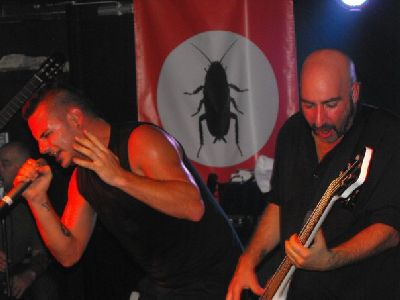 Breed_77_live