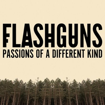 Flashguns-Artwork-600-600x600