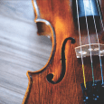 What Notes Are the 4 Strings on a Violin? Reading music is one of the things you will learn when you take violin lessons. If a script is to actors, […]