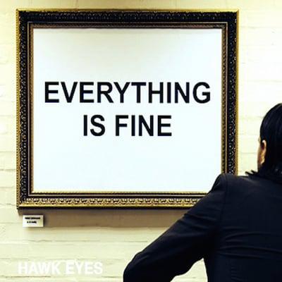 Hawk Eyes Everything Is Fine