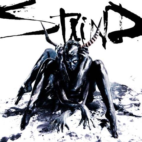 Staind_Staind5