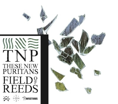 these-new-puritans-album-field-of-reeds